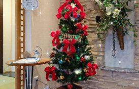 床暖房&クリスマスツリー♪
